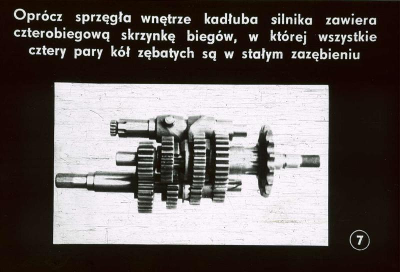 sfm-junak.pl/images/photoalbum/useralbum_860/10_t2.jpg
